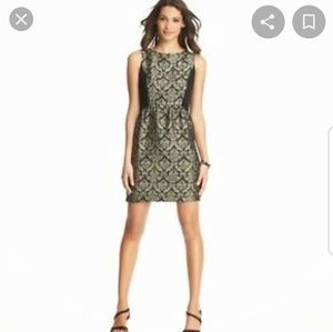 Ann Taylor Loft Sheath dress size 8
